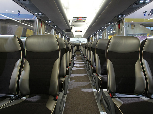 Bus Ground Transportation World Wide 58 Seats