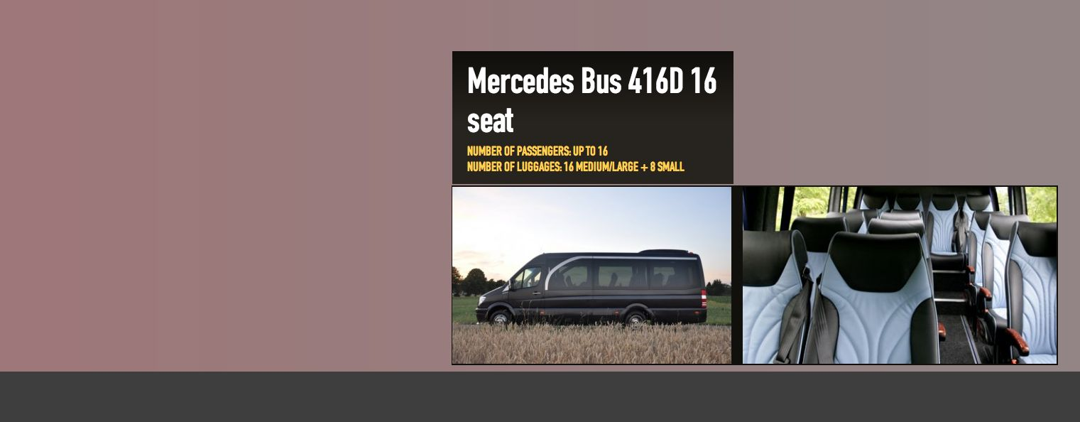 Moscow Coach Service