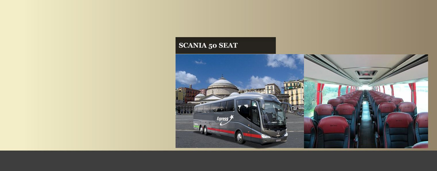 Naples Sightseeing Bus